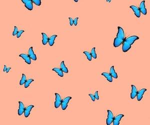 butterflies, lockscreen, and wallpaper image