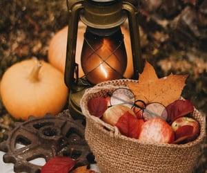 apples, foliage, and lantern image