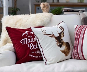 christmas, couch, and decor image