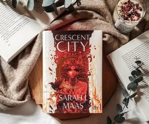 instagram, anothersadlovebook, and crescent city image