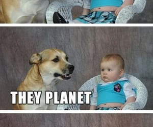 humour, humor, and little ones image
