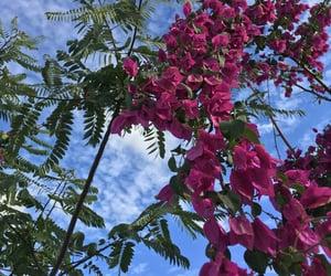 inspiration, florish, and flowers image