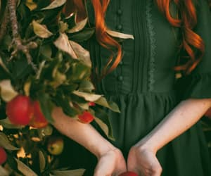 apples, fairytale, and red hair image