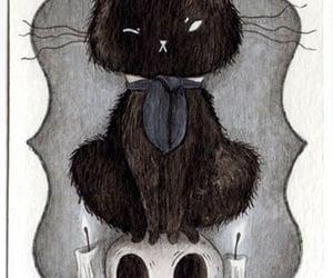 black cat image
