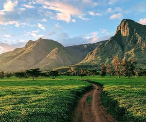 africa, mountain, and nature image