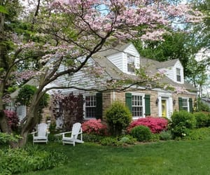 flowers, home, and garden image