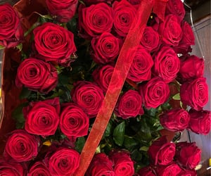flowers, red roses, and Relationship image