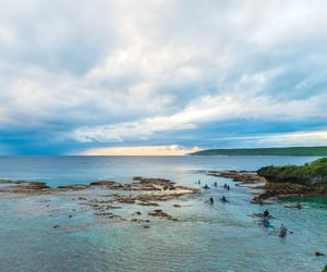 beach, sea, and new zealand image