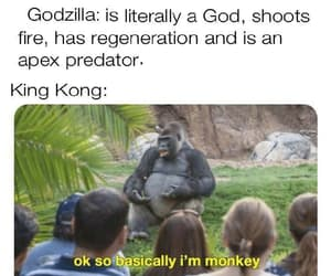 funny, meme, and mood image