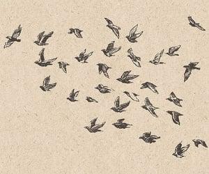 bird and drawing image