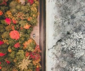 camino, otoño, and fotografía image