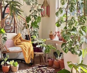 aesthetic, cozy, and decor image