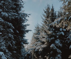 aesthetic, snow, and travel image