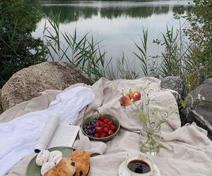 fruit, lake, and picnic image