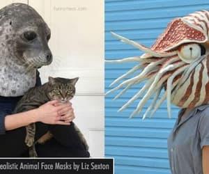animal mask, funny, and funny mask image