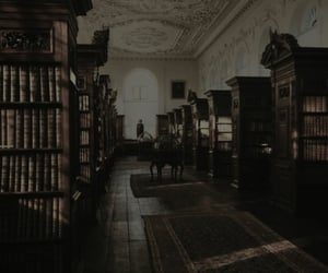 library, book, and dark academia image