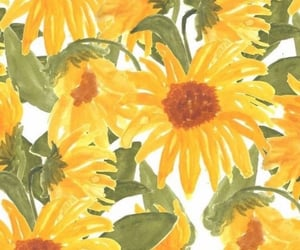 wallpaper, sunflower, and yellow image
