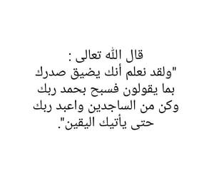 arab, dz, and quran image