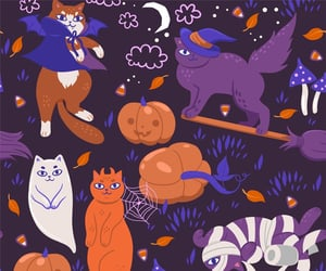 background, cats, and Halloween image