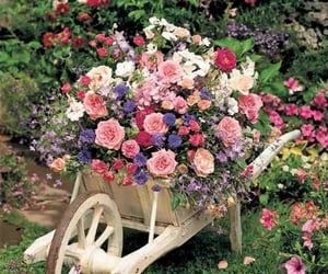 planter, flower bed, and flowers image