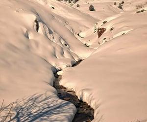 naturaleza, nieve, and invierno image