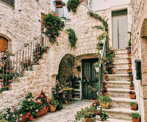 architecture and flowers image