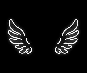black, wallpaper, and wings image