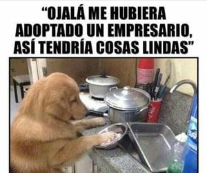 cocina, divertido, and meme image