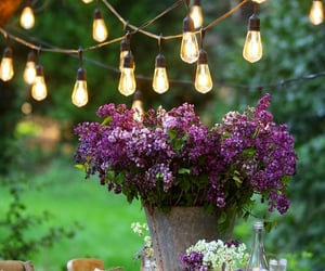 bulb, flowers, and marriage image