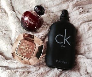 article, perfumes, and calvinklein image