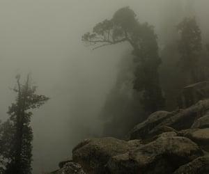 dystopian, fantasy, and fog image