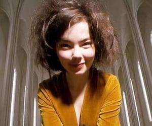 bjork, messy hair, and mustard image
