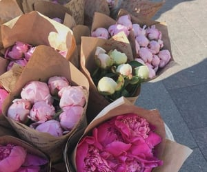 flowers, girl, and weheartit image