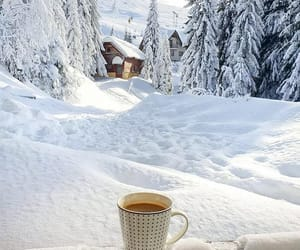 coffee, nature, and snow image