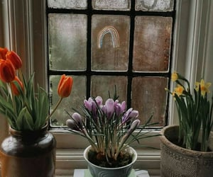 february and window image