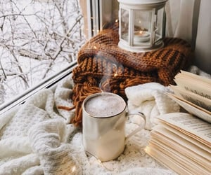 aesthetic, winter, and bibliophile image