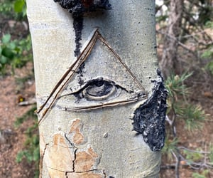 colorado, nature, and conspiracy image