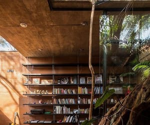 bookshelves, house, and interior image