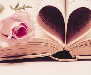 book, photography, and rose image