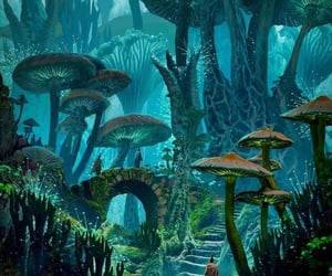 fantasy, forest, and mushrooms image