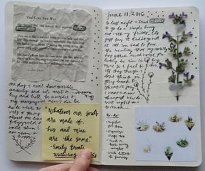 journal, aesthetic, and plants image