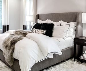 bed, cushion, and rug image