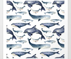 art, whale, and art print image
