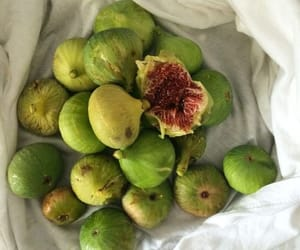 fig and food image