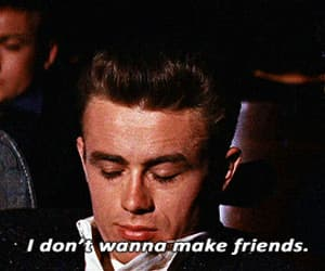 gif, rebel without a cause, and best friends friendship image