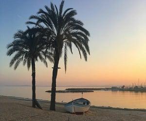 beach, ocean, and palmtrees image