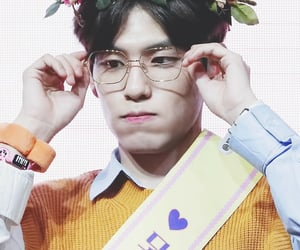 flower crown, glasses, and fansign image