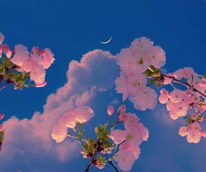moon, blue sky, and design image