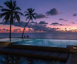 aesthetic, exotic, and Island image