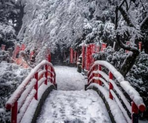 amazing, beauty, and cold image